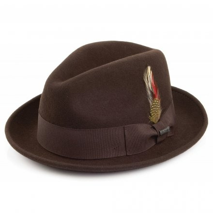 Hüte - Crushable Blues Trilby (braun)